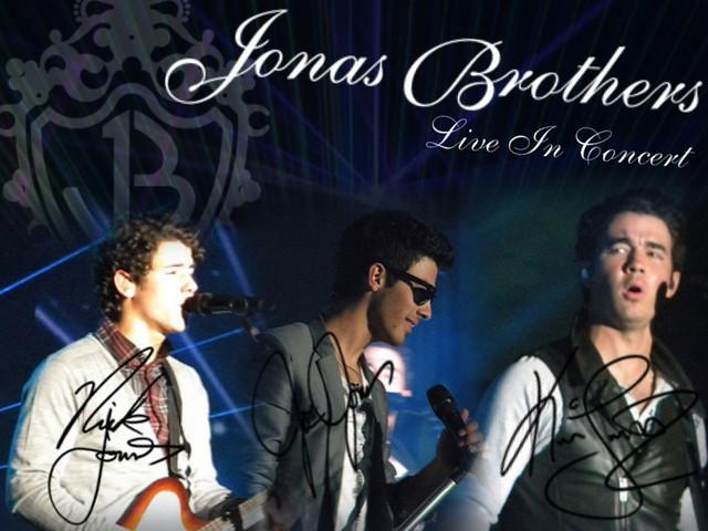 """Jonas Brothers """"Live In Concert"""" desktop (1024x768)"""