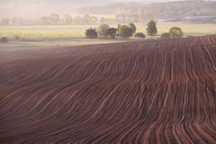 (:Linda:) Tags: autumn field germany landscape village thuringia soil autumnal erde brnn erdboden erdreich ackerboden autumnallandscape landschaftimherbst herbstlichelandschaft