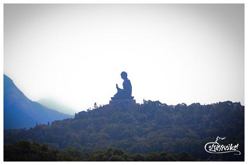 buddha cablecar
