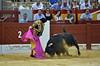 El Fandi (Fotomondeo) Tags: elfandi davidfandila matador torero toro toros plazadetoros corridadetoros bull bullfight bullfighter bullring alicante alacant lashoguerasdesanjuan fogueres spain españa