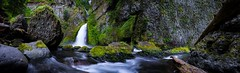 The Spirit of Wachella (Matt Straite Photography) Tags: river water stream trees forest trail hike columbiarivergorge gorge waterfall green rocks canon nature landscape wide panorama oregon