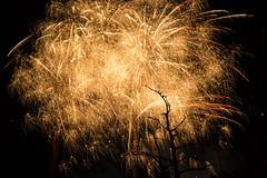 Like Shining from Shook Foil (srichard12341) Tags: twinkle golden fireworks