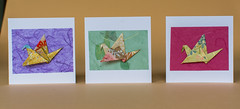 Craft fair cards, Red House-145 (anuradhadeacon-varma) Tags: 2015 july july2015 redhouse thepleasance thetoilers