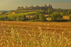 Montereggion di torri si corona / Of turrets, Monteriggioni crowns his walls (Monteriggioni, Tuscany, Italy) (AndreaPucci) Tags: monteriggioni tuscany toscana siena italia italy andreapucci canoneos60 medieval dante alighieri
