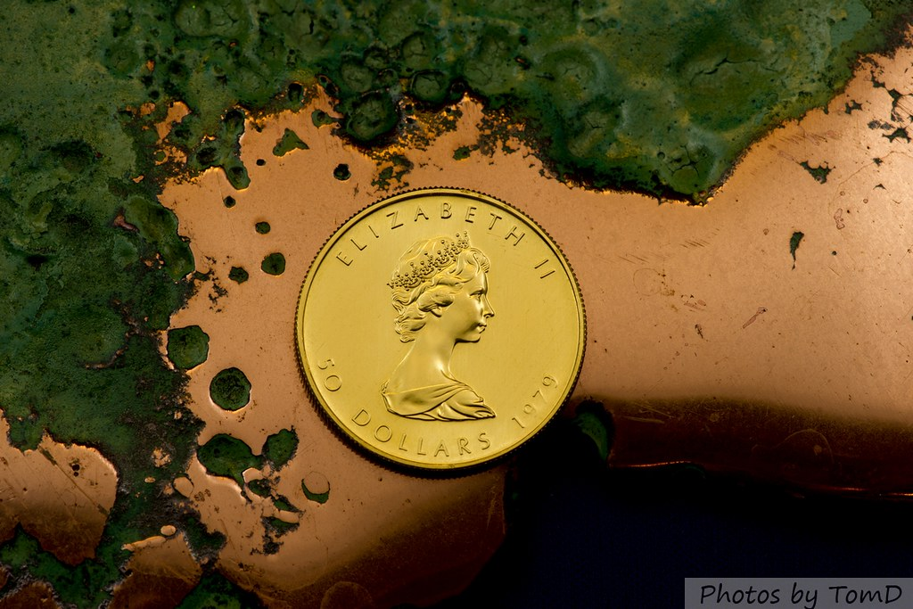 Gold Maple on copper