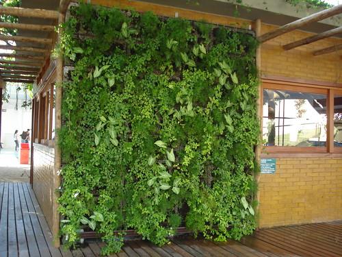 jardim vertical goiania:Parede Verde