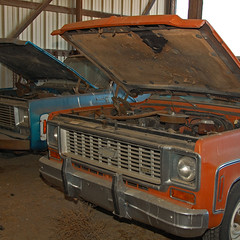 Chevys (wilsonti) Tags: family chevrolet oklahoma up truck farm pick mckinley ok hooker