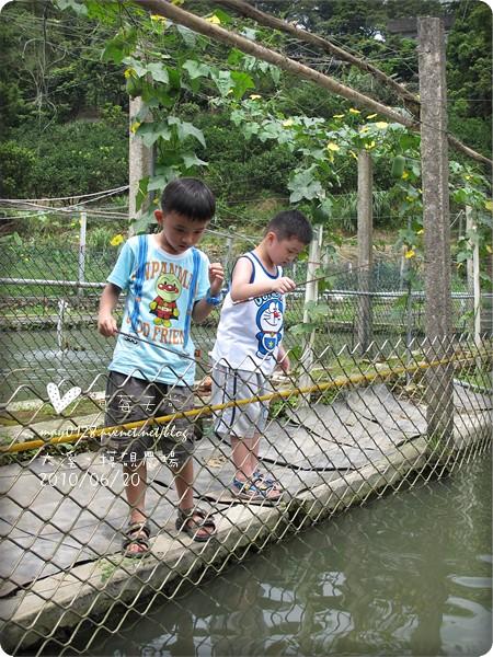 大溪摸硯農場26-2010.06.20