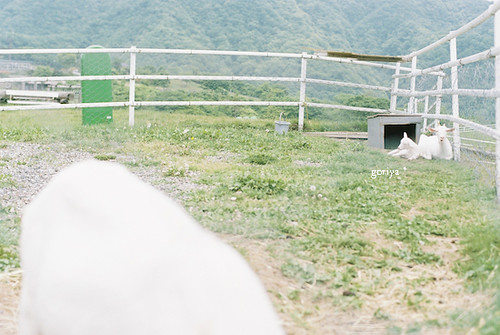 大笹牧場 2
