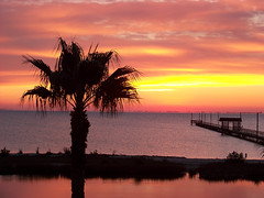 Sunrise in Rockport, Texas (Dreaming of you . . .) Tags: ocean beach sunrise coast pier palm