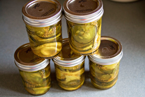 Bread & Butter Pickles - 4
