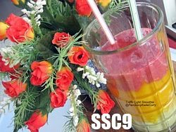 SSC9-TrafficLightSmoothie