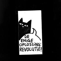 De enige oplossing: Revolutie!