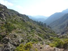 Le sentier après la traversée des deux ruisseaux : on voit plus loin les barres rocheuses qu'on évite par le haut