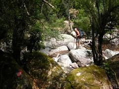 Sentier de descente de Caprunale : retour au Fangu