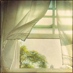 Breezy (SLEEC Photos/Suzanne) Tags: texture window action curtain breeze freshvintage superlativas saariysqualitypictures magicunicornverybest selectbestexcellence michellenicoleaction sbfmasterpiece shadowhousecreationstexture truthandillusion bestofblinkwinners