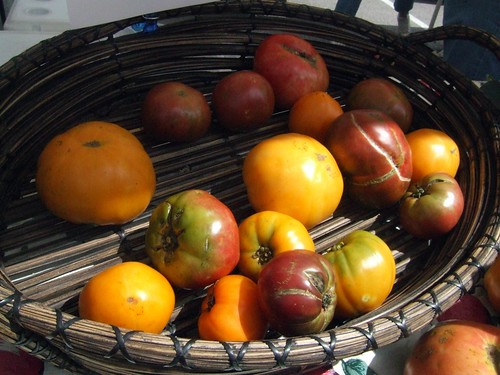 Heirloom Tomatoes at Cedar Park Farms to Market