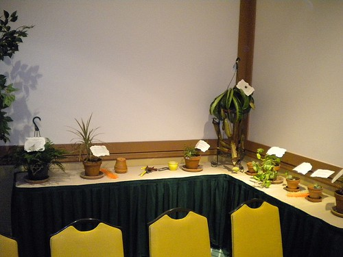 Herbology Room