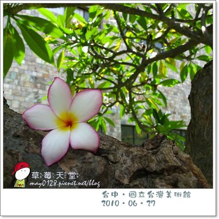 台中國美館88-2010.06.27