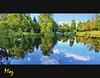 Virgina Waters Lake (Muzammil (Moz)) Tags: lake london beautiful reflections mirror bluesky richmond moz virginiawater panonrama