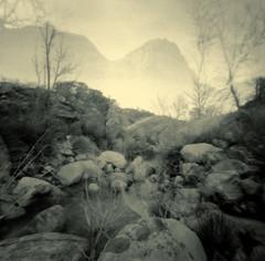 Strange fog effect (geminitwincam) Tags: 120 film square pinhole nv redrock zero2000