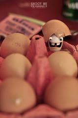 Naissance d'un lapin crtin / Born to be a cretin (@YannGarPhoto) Tags: rabbit cuisine 50mm born nikon bokeh nintendo ds eggs nikkor f18 18 naissance lapin ubisoft flou calimero cretin oeufs 118 coquille wii rabbids d5000 bokehhearts lapincretin yanngar