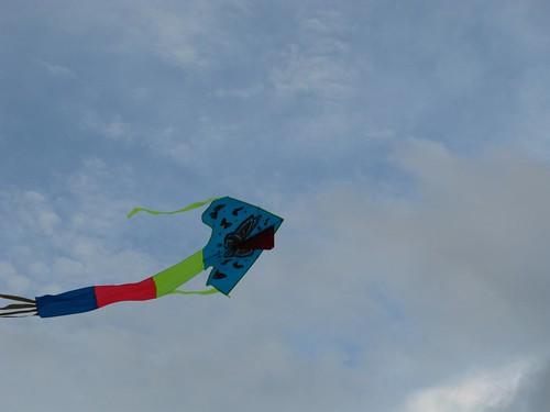 100725國父紀念館 風箏