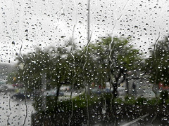 تار (Cna1_10) Tags: blur tree window rain rainy درخت شیشه ابر روز kartpostal بارانی