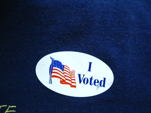 I voted in the Michigan 2010 primary