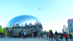 just cant get enough of the bean (wacky doodler) Tags: chicago milleniumpark cloudgate thebean
