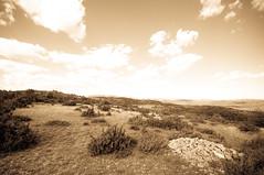 causse du Larzac (photo & life) Tags: sky france landscape ciel paysage larzac causse aveyron lacouvertoirade pentaxk20d caussedularzac