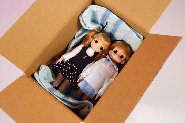 把妹妹裝箱