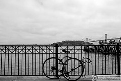 Anti theft protection (Just a guy who likes to take pictures) Tags: ocean sf california ca city bridge sea urban bw en usa white haven black west water monochrome bike bicycle wheel clouds america fence photography bay coast pier us und san francisco aqua fotografie photographie pacific harbour lock united hill wheels wolken cable hills cables stadt infrastructure vs states brug van slot amerika theft anti protection zwart wit weiss schwarz fahrrad stad staten wielen fiets kabels kabel hek zw kust brucke wiel verenigde infrastructuur kabelbrug