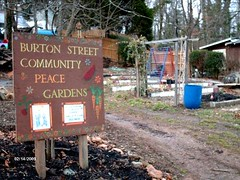 Burton Street Community Peace Gardens (by: BSCPG)