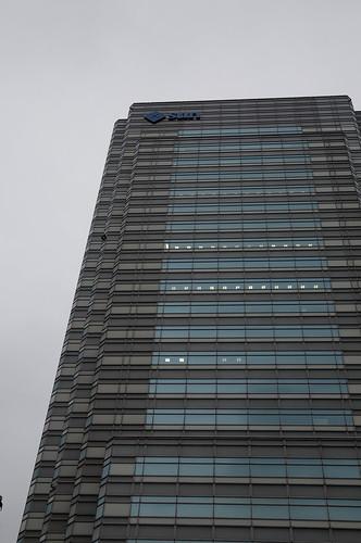 Sun Microsystems, Youga