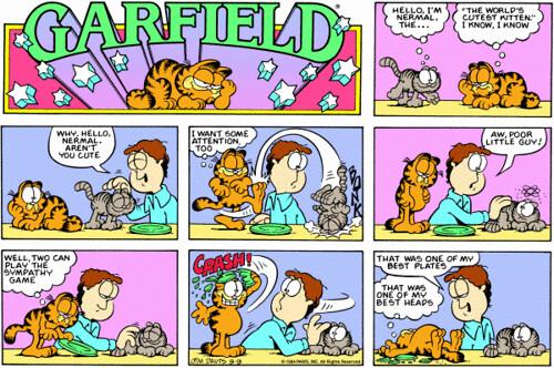 Garfield&Nermal