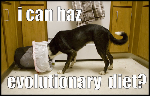 i can haz evolutionary diet?