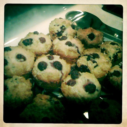 Blueberry Muffins (YIP 8/11/10)