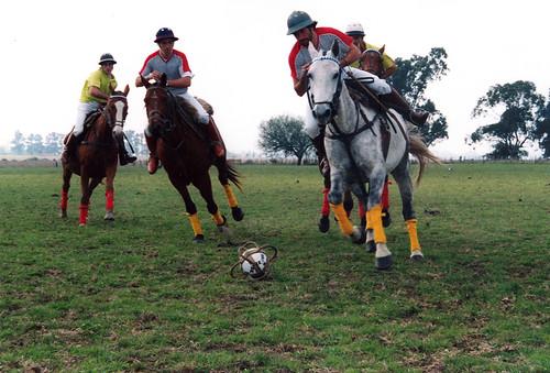 pato deporte argentino
