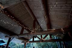 Dance Ceiling (FlickaHuber) Tags: alaska nikon d90 1224mmf4