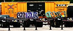 Amune - Quota (mightyquinninwky) Tags: railroad truck graffiti tag graf tracks railway tags tagged railcar rails boxcar graff graphiti freight trailers tanker trainart tbox ttx fr8 railart uek spraypaintart freightcar quota kuota paintedsteel boxcarart amune taggedboxcar paintedboxcar csxtrainyard ttxcom railcarpoolingexperts howellfreightyard paintedrailcar paintedfreight taggedrailcar taggedfreight trainsformyspacestation