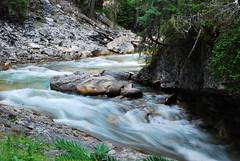 Johnston Canyon Rapids (AngelinaJoy) Tags: albertacanada banffnationalpark johnstoncanyon