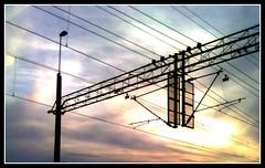 Energy Supply (brandsvig) Tags: sun sol train energy cables glumslv banverket energi sknetrafiken dsbfirst