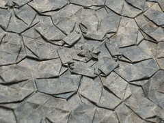 Lokta tessellation, close-up