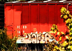 ? (mightyquinninwky) Tags: railroad train graffiti tag graf tracks railway tags tagged railcar rails graff graphiti freight trainart rollingstock fr8 railart jarno spraypaintart freightcar movingart freightart paintedrailcar taggedrailcar