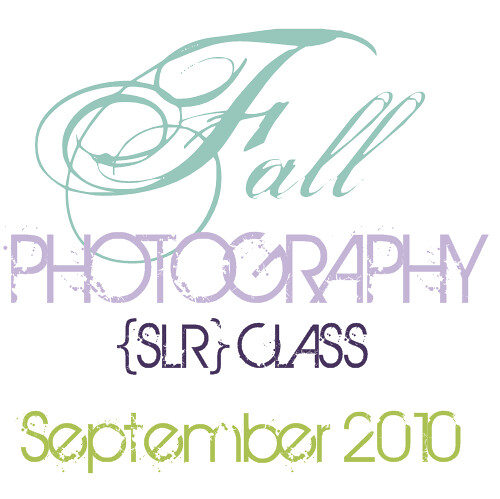 FALL blog button ad