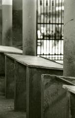 banco (enricoerriko) Tags: nyc venice girls red sea sky blackandwhite bw italy sun moon canada black rome green london love beach argentina yellow brasil torino la graphicdesign mediterraneo italia mare peace power web ottawa free bn land donne pace ra gaia leone mercato italie marche pampas bua enrico pesce libertà adriatico pescheria lemarche verdura comunicare civitanova blù civitanovamarche portocivitanova libertè fruttivendoli civitanovaalta pesciarole egualitè erriko cartolinedacivitanovamarche enricoerriko fotodicivitanovamarche facebookflickrcom vsualdesign comcomunecivitanovamarchemcit