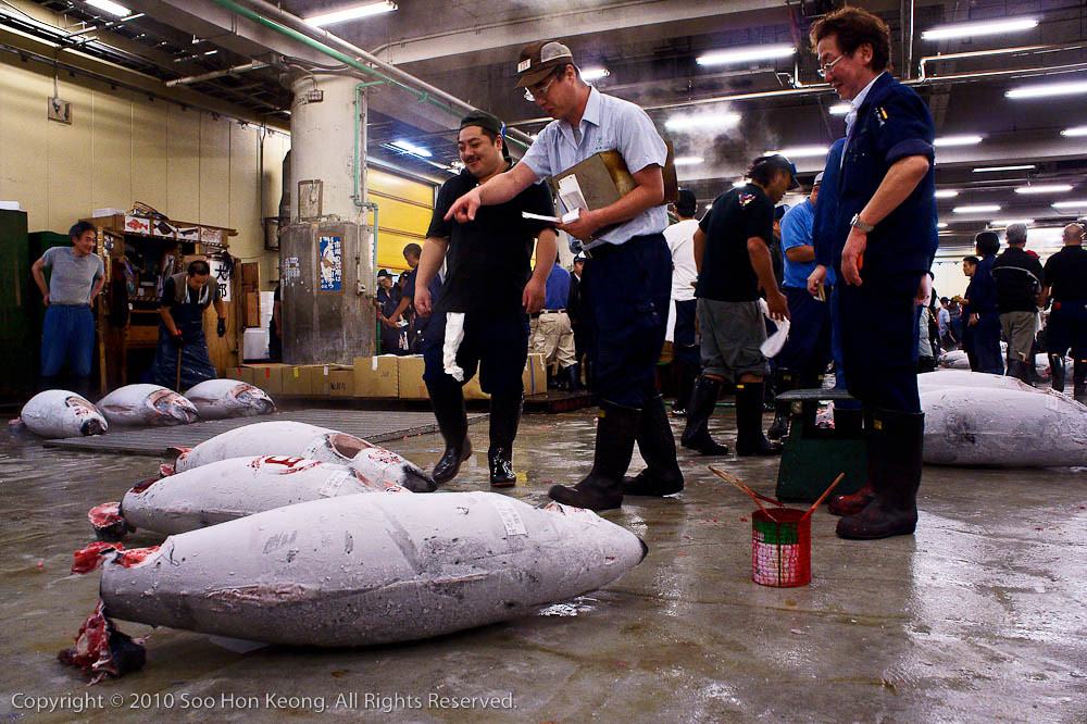 Counting the Purchase @ Tsukiji Market, Tokyo, Japan