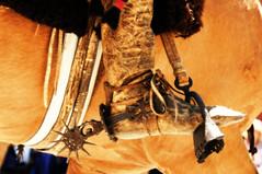 Identidad (Eduardo Amorim) Tags: southamerica argentina artwork iron ironwork poncho gauchos pampa loro pala apero gaucho staffa amricadosul loros stirrup gacho estribo campero amriquedusud provinciadebuenosaires recado gachos sudamrica sanantoniodeareco suramrica amricadelsur areco sdamerika pilchas pilchasgauchas steigbgel recao pampaargentina camperos americadelsud americameridionale campeiros campeiro eduardoamorim estribera estrivo trier pampaargentino