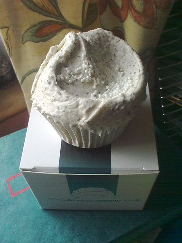 Frost and Snow Cupcake